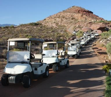 Golf cart backup