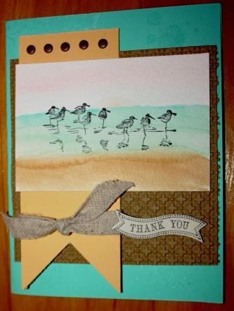 Birds on the beach (2)