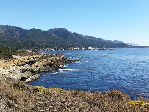 Point lobos 2