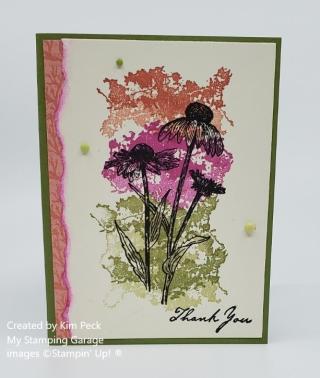 Nature's Harvest samples (WM)- fancy stamped background (2)